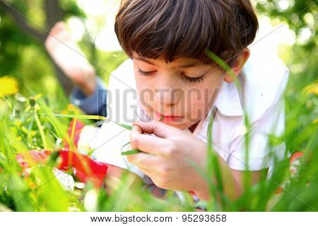 preteen handsome keen boy red and old book in the summer park with dandelion flowers