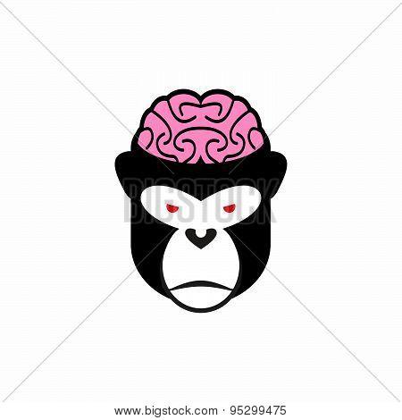 Monkey brains. Vector illustration logo head animal. Pink brain and black monkey. Open cranial box.