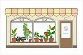 stock photo of pot plant  - Store selling pot plants and pots - JPG