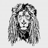 picture of dreadlock  - Lion head with dreadlocks - JPG