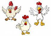 stock photo of roosters  - Cartoon white roosters or cocks with red crests and flapping wings - JPG
