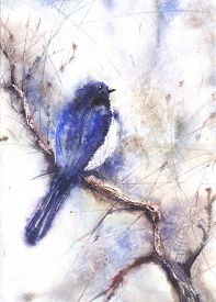 stock photo of water bird  - Water color illustration of a bird sitting on a branch - JPG