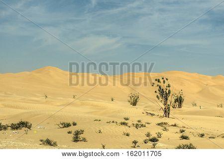 Jeeps traditional Safari Dune Bashing with tourists Oman Ubar in Desert Rub al Khali 7