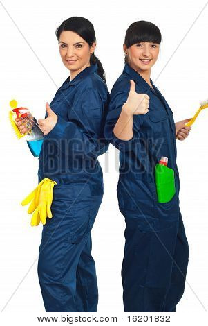 Successful Team Of Cleaning Women