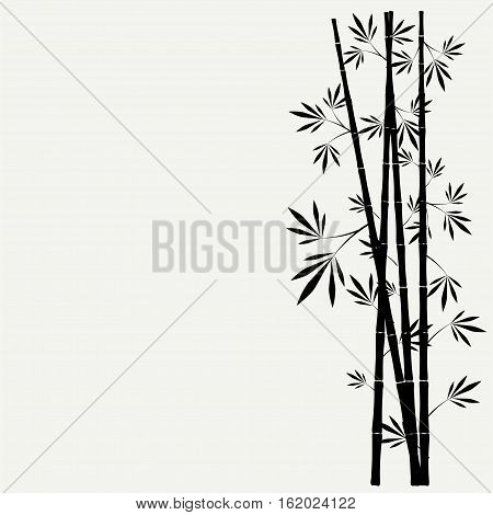 Bamboo Stems With Leaves On White Background