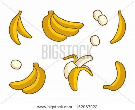 Vector Set of Cartoon Yellow Bananas on white background. Single Banana, Peeled Bunch, Slices