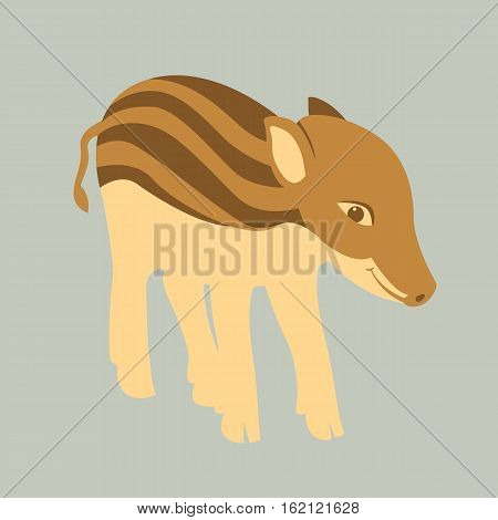 young boar vector illustration style Flat side
