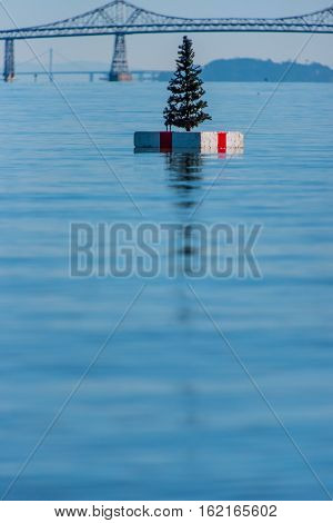 Christmas Tree On A Float In San Franciso Bay