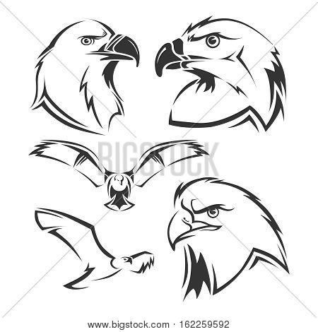 Eagle, hawk vector mascots set. Tattoo head of eagle and emblem freedom eagle illustration