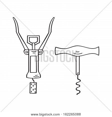 Vintage and modern corkscrews vector icons hand drawn doodle sketch, isolated on white.