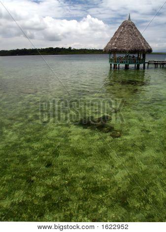 Bocas103