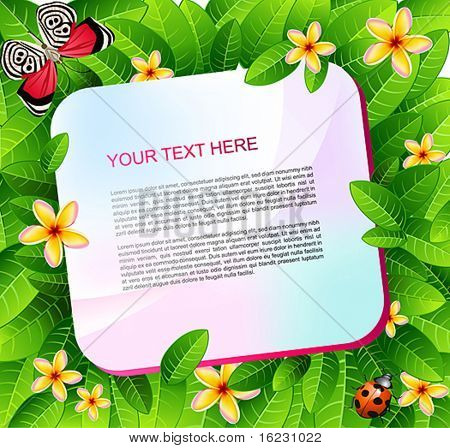 vector summer background with place fore your text