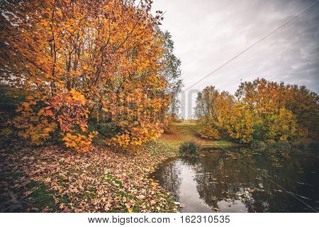Colorful Trees By A Small Pond In The Fall