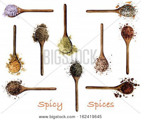 Collection of Various Spices with Inscription in Wooden Spoons: Kosher Salt Curry Powder Salt with Cayenne Pepper Zira Coriander Thyme Salt with Chili Dried Paprika Salt with Petals and Cumin Powder