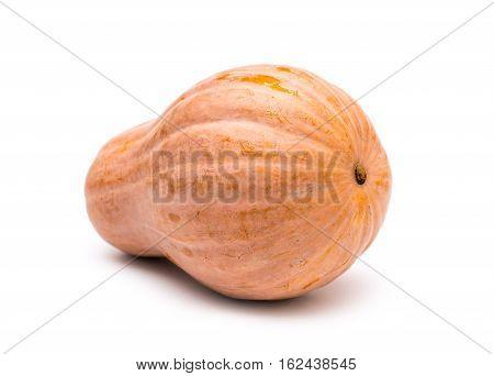 Pumpkin on white background. Ripe yellow pumpkin