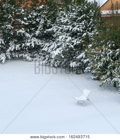 Suddenly, the snow fell. White snow covered the forgotten chaise lounge, green grass and pine trees
