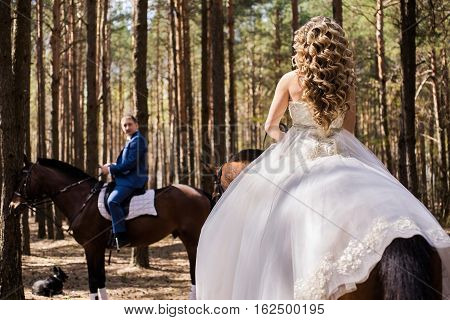 Bride on a horse the bride and groom on horseback riding horseback riding riding a horse wedding gown