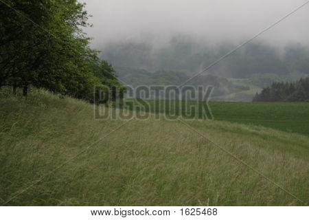 Wet Highland
