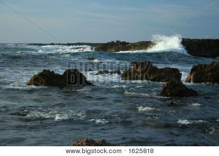 Sharks Cove Seascape