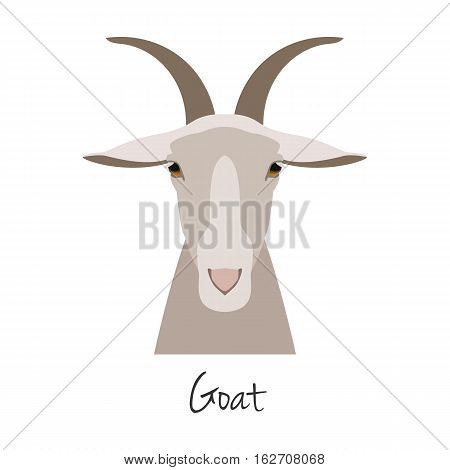 Vector flat cartoon horned goat head, farm animal. , goat muzzle isolated. Flat style, cartoon object. poster banner print advertising, design element.