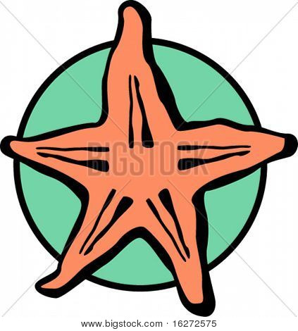 starfish or sea star