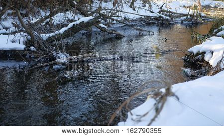 Forest river flowing water late winter nature melted ice landscape, arrival of spring