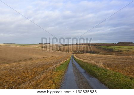 Country Road And Valley