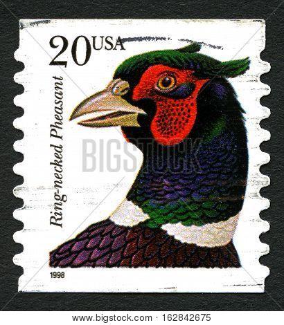 UNITED STATES OF AMERICA - CIRCA 1998: A postage stamp printed in the United States of America shows Ring-necked Pheasant - Phasianus colchicus circa 1998.