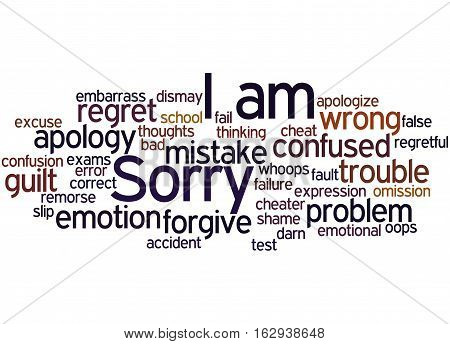 I Am Sorry, Word Cloud Concept 7