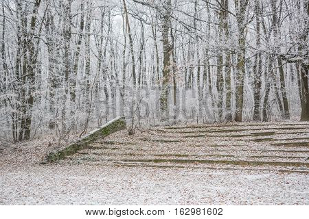 Stone amphitheater covered with snow in the snowy forest with frozen icy branches and fallen leaves still visible