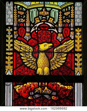 Stained Glass - Phoenix Rising From The Ashes