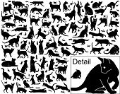 image of black cat  - Collection of vector black cats in various positions with basic outlines included - JPG