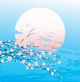 image of cherry trees  - Vector illustration of a cherry twigs in bloom - JPG