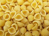 Small Shell Shaped Pasta poster