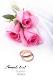foto of pink rose  - wedding rings and pink roses - JPG