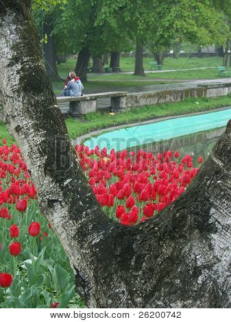 Romantic couple sitting in a park on a park bench holding and kissing each other