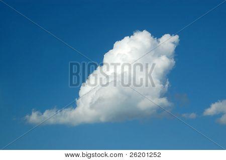 Swan-like cloud on blue sky