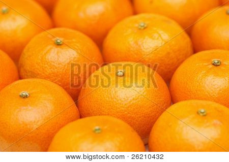 Mandarin orange background