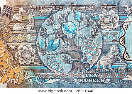 Indian ten Rupee note extreme closeup background