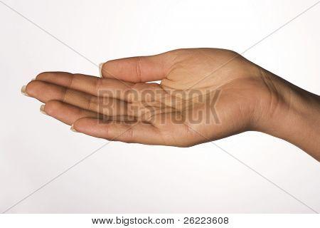 female palm open