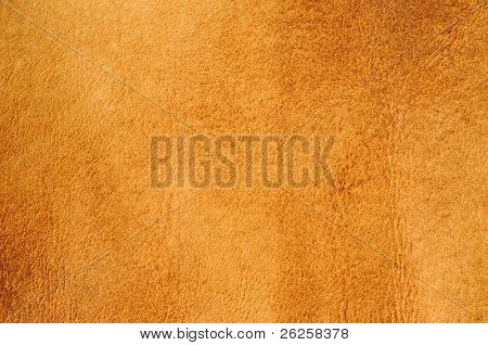 burned skin leather textured background