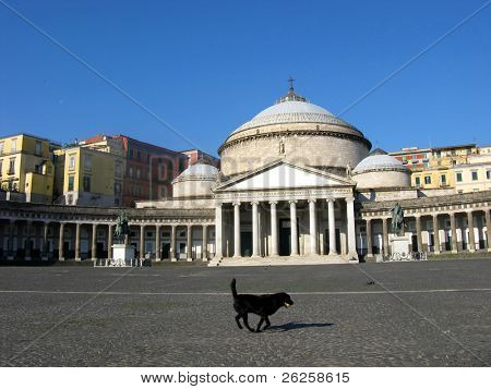 San Francesco di Paola church in Naples Italy and running dog