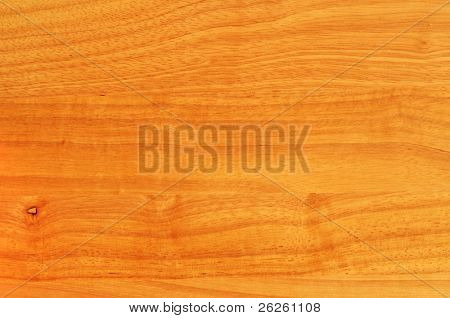rubber hevea tree wood with knots textured background