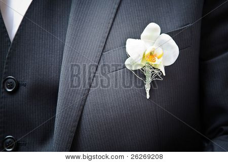 orchid on the suit