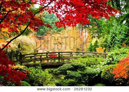 Bridge In A Garden