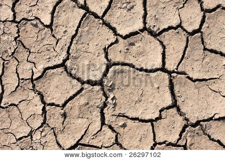 Dried out soil texture of a barren land