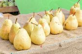 Healthy Organic Yellow Pears On The Table With Burlap At Village Fair. Fruit Harvest Fresh Picked Wi poster