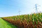 stock photo of wind-turbine  - Wind turbines on a farm - JPG