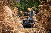 stock photo of seoraksan  - Buddhist grave at Gwaneumsa buddhist Temple at Jeju Island Korea - JPG