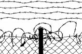 vector of wired fence with barbed wires